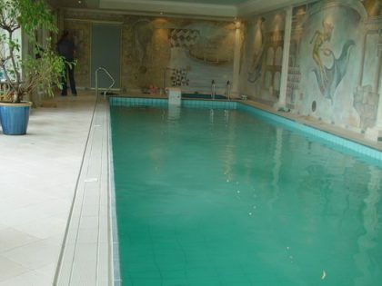 Бассейн в частном доме 4,00 х 15,00 м